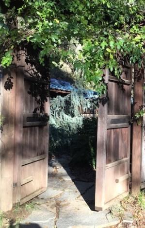 Open Door to Dharma
