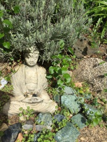 buddhacu small
