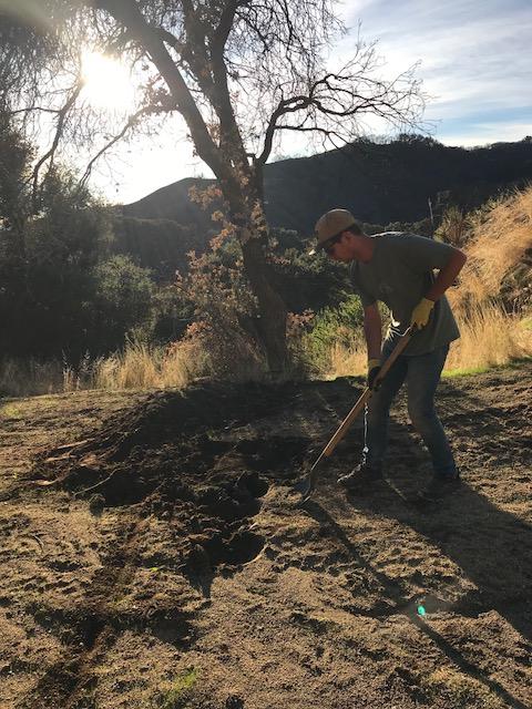 Eliot digging